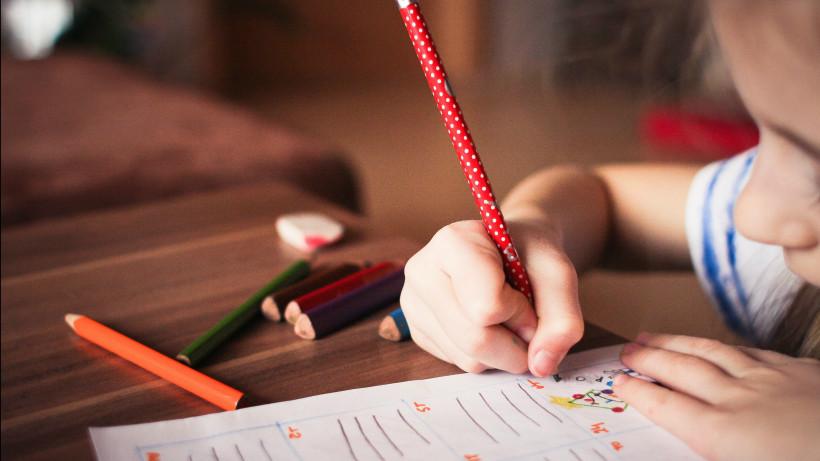 Дежурные группы создадут для учеников начальных классов в Московской области
