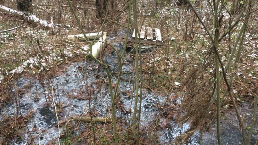Минэкологии потребовало устранить опасность загрязнения двух рек в Домодедове