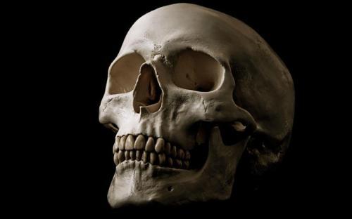 Персонал в аэропорту Мюнхена был в шоке, когда обнаружил, голову и скелет в багаже двух итальянок во время обычного рентгеновского сканирования. Женщин сказали, что останки принадлежат члену их семьи, который умер в Бразилии, но хотел бы быть похоронен в Италии. После предъявления соответствующих документов на неожиданную находку, пара, по-видимому, продолжила путь.