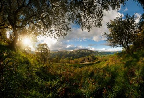 Национальный парк Брекон-Биконс находится на территории четырёх горных хребтов и располагается в южной части Уэльса. В пределах природоохранной территории довольно значительные площади занимают пастбища овец. Отдельной частью парка является его западный район, получивший название Форрест Фавр, которому в 2005 году ЮНЕСКО присвоила статус геопарка. (Фото Andrew Brooks   2020 UK National Parks Photography Competition):