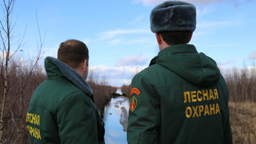 Работы по обводнению торфяников ведут в городском округе Луховицы