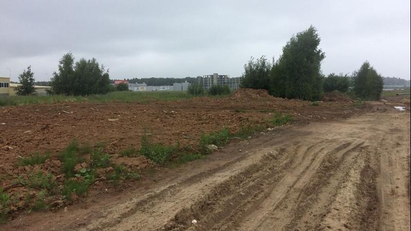 Свыше 50 земельных участков выделят многодетным семьям Московской области