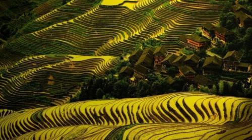 Дажай, Китай