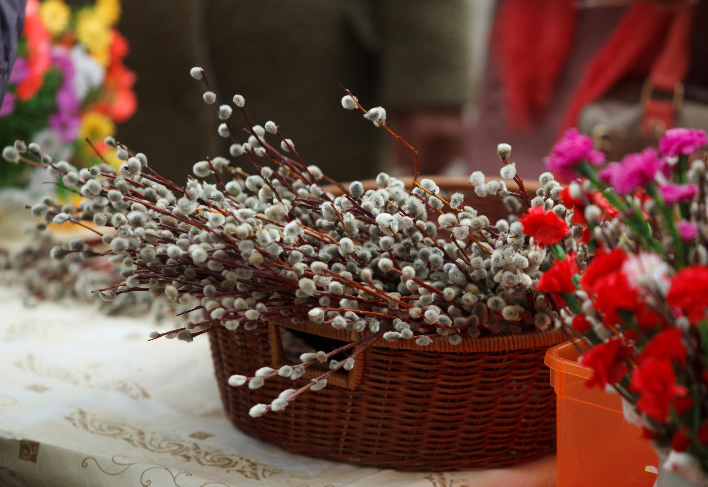 12 апреля православные верующие отмечают Вербное воскресенье