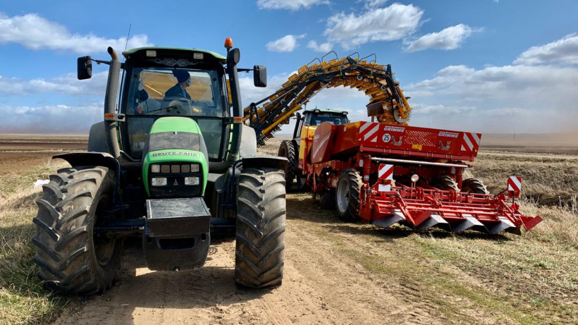 Более 15 тыс. га земель планируют засеять картофелем в Подмосковье в 2020 году