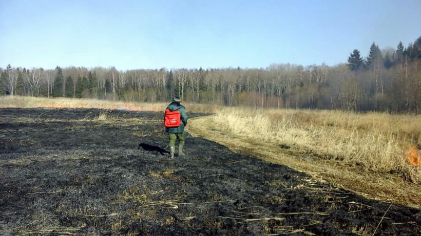 Более 500 выездов совершено на пал сухой травы с начала пожароопасного сезона в Подмосковье