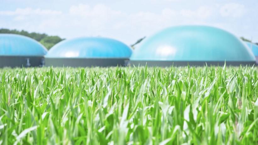 Генерирующая установка на биогазе появится в Люберцах во II квартале