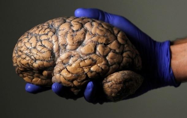 Названа серьезная опасность COVID для мозга