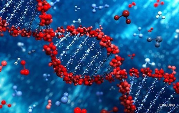 Ученые составили детальную карту генома коронавируса