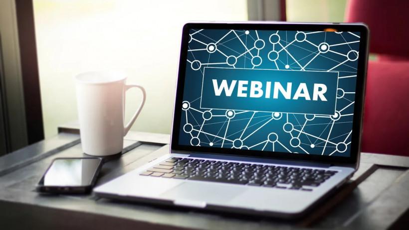 Wildberries проведет вебинар для предпринимателей при поддержке Мининвеста Подмосковья