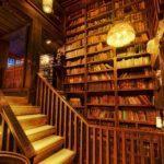 Библиотечный урок: «История моей библиотеки»