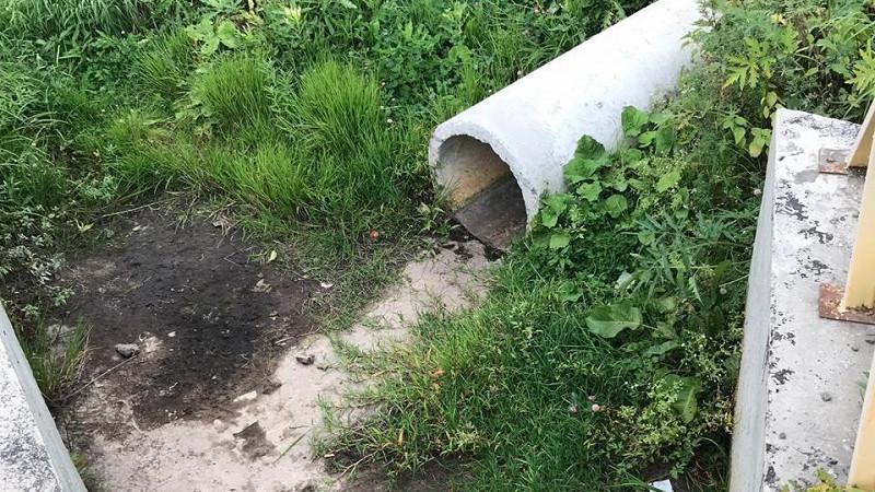 Минэкологии Подмосковья расследует случаи сброса сточных вод в поселке Дмитровского округа