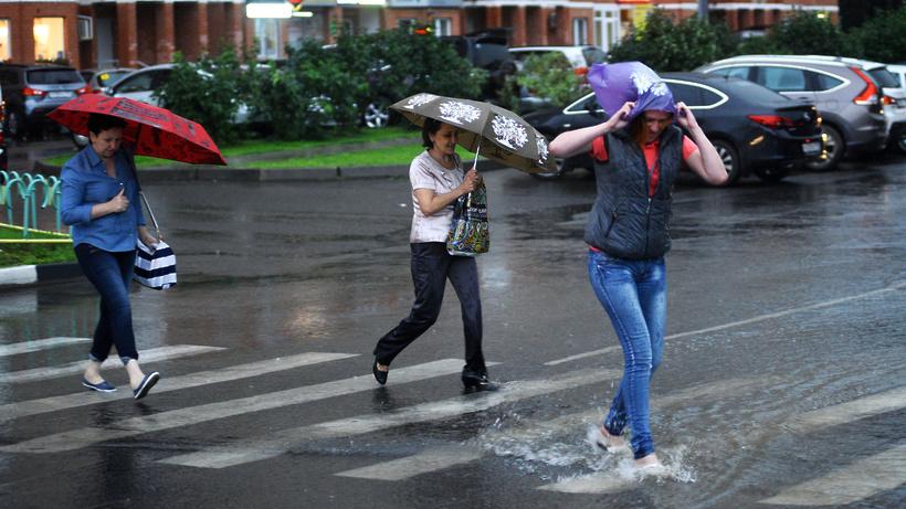 Минтранс Подмосковья предупреждает о грозе и усилении ветра