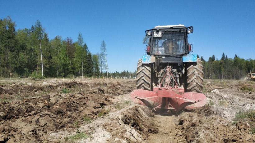 Одиннадцать лесничеств Подмосковья завершили подготовку почвы для посадки лесных культур