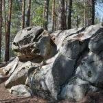 Онлайн-лекция «Памятник природы «Скрипинские Кучуры»