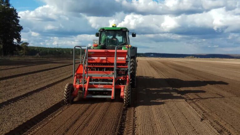 Порядка 2,4 тыс. га земель засеяли яровыми в Волоколамском городском округе