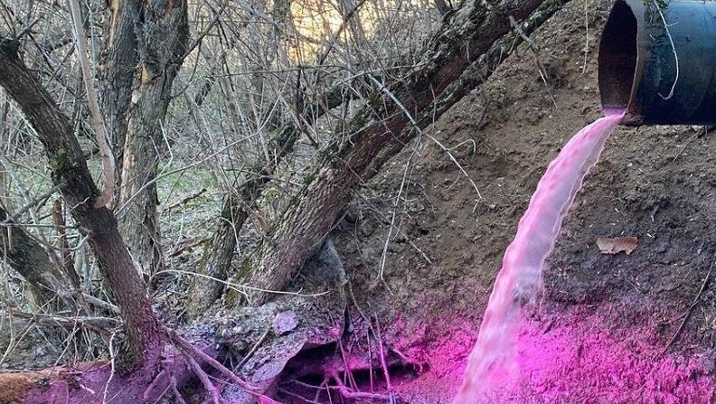 Сброс сточных вод с примесью химикатов остановили в Рузском городском округе