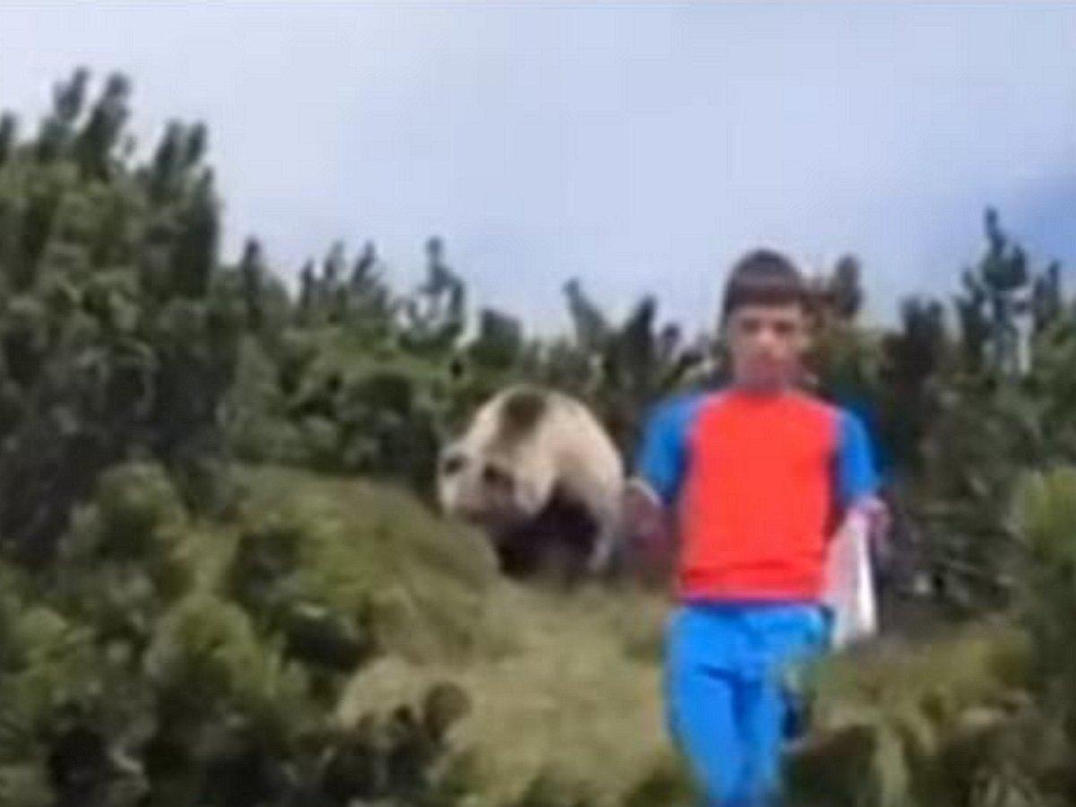 Видео, как мальчик спокойно ушел от преследования медведя, стал хитом