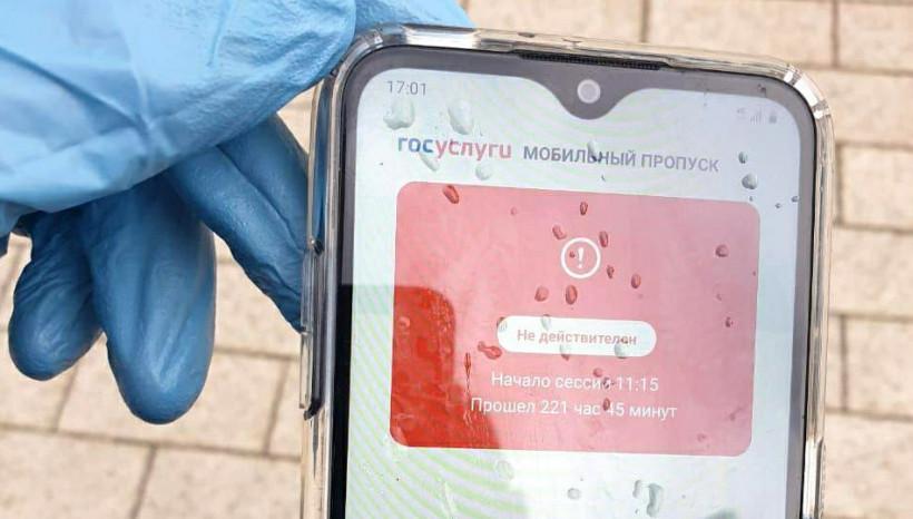 Жители Московской области оформили через мобильное приложение свыше 18,9 млн пропусков