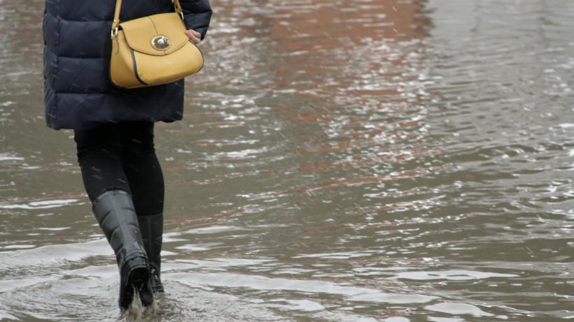 Губернатор поручил ликвидировать последствия ливней в Подмосковье к вечеру понедельника