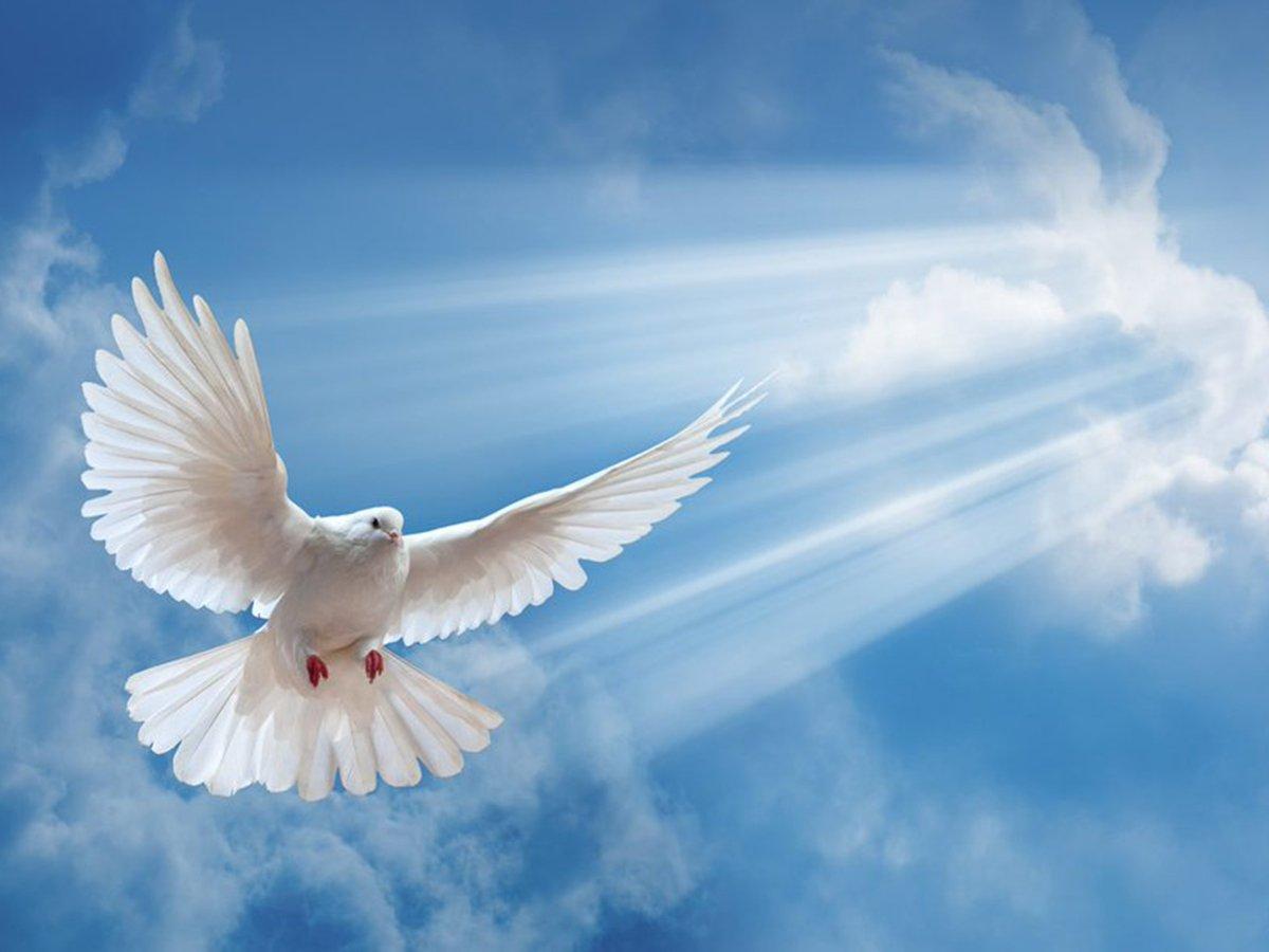 Какой сегодня праздник: 8 июня 2020 года отмечается церковный праздник Духов день