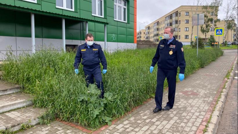 Начальник Госадмтехнадзора проверил содержание территорий в Красногорске и Истре