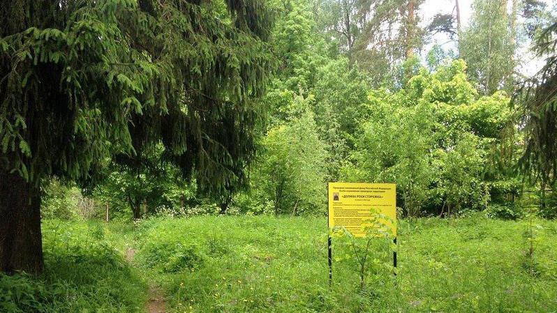 Новый природный заказник создан в городском округе Щелково