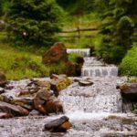 Онлайн-программа «Серебряные родники земли Симбирской»