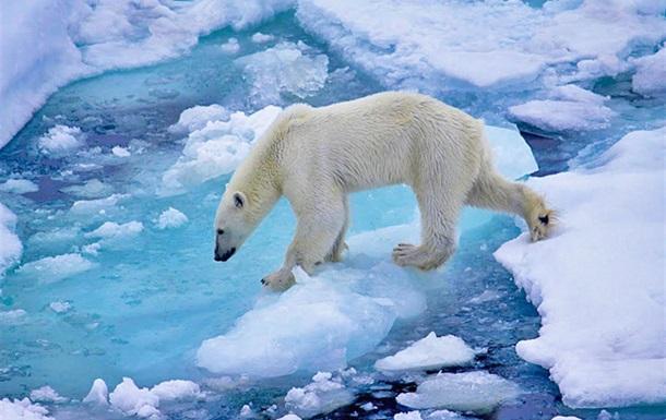 Потепление Арктики идет на 80 лет быстрее