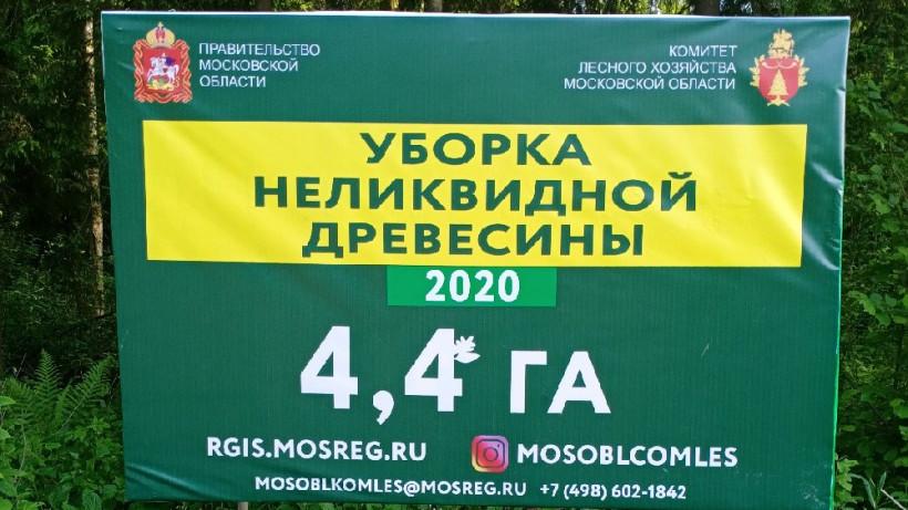 Санитарно-оздоровительные работы продолжаются на территории лесного фонда региона