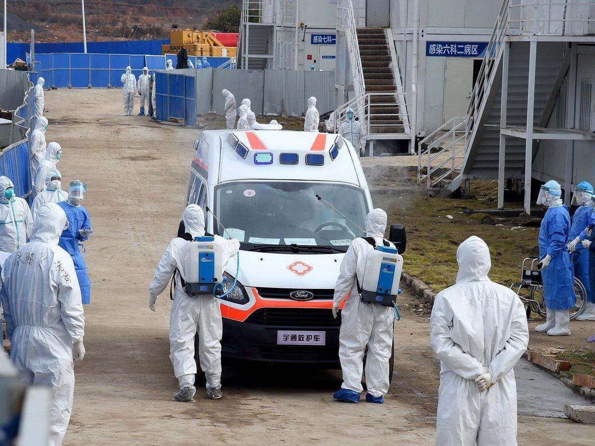 Стало известно, откуда попал коронавирус в Пекин