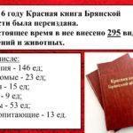 Видеоэкскурсия «По страницам Красной книги Брянской области».