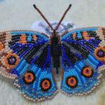 Виртуальный мастер-класс «Бабочка»