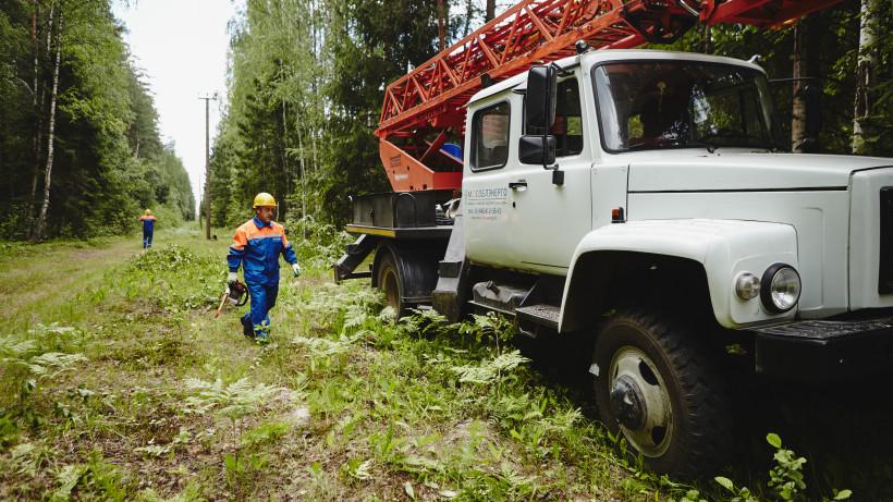 Более 120 га просек вдоль линий электропередачи расчистили в Подмосковье