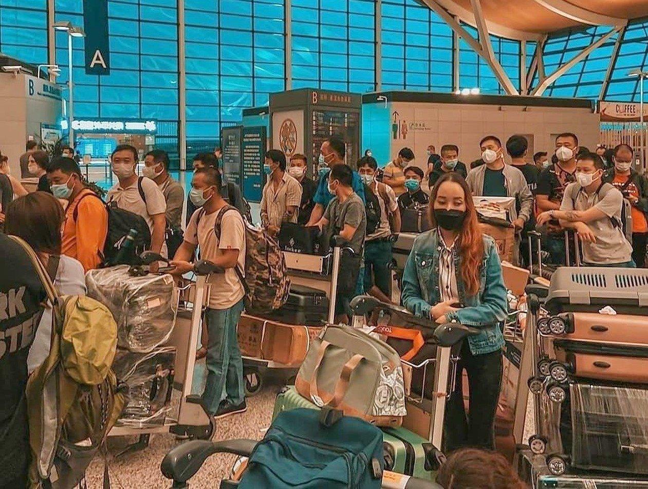 «Бросайте где хотите»: «Аэрофлот» вынудил россиян оставить животных в Китае