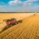 Дистанционная беседа «Уборка урожая»