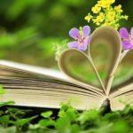 Интерактивное чтение и игровые задания «Красота на страницах книг»