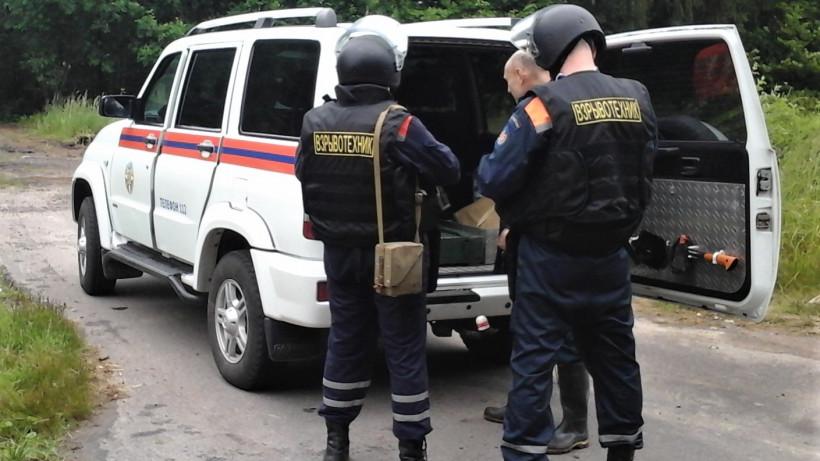 Минометные мины времен ВОВ обнаружили в лесу городского округа Шаховская