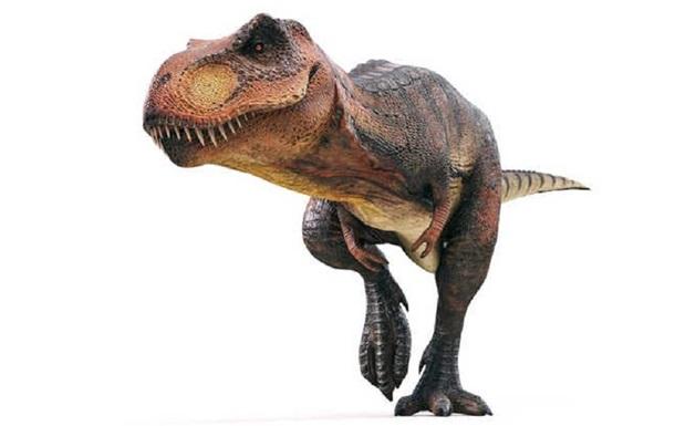 На Мадагаскаре обнаружен маленький предок динозавров