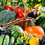 Онлайн-встреча «Дары природы для здоровья человека»