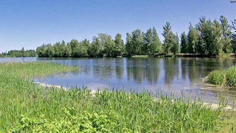 Особо охраняемую природную территорию в Наро-Фоминском округе поставили на кадастровый учет