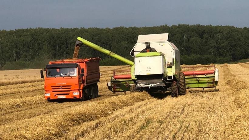 Почти 450 зерноуборочныхкомбайнов задействуют в уборке урожая в Подмосковье