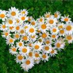 Поздравительная открытка семей-юбиляров «Вместе быть такое счастье»