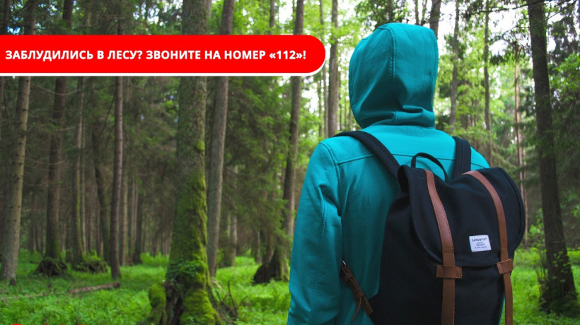Система-112 Московской области способствует оперативному поиску заблудившимся в лесу