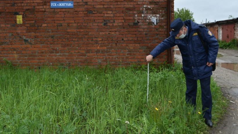 Траву окосили на 1,5 тыс. общественных пространствах Подмосковья за месяц