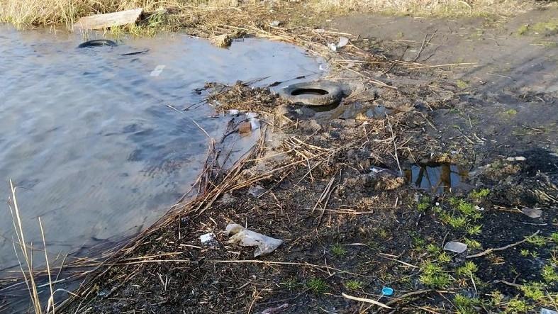 Три компании заплатят почти четверть миллиона рублей за загрязнение рек в Истре