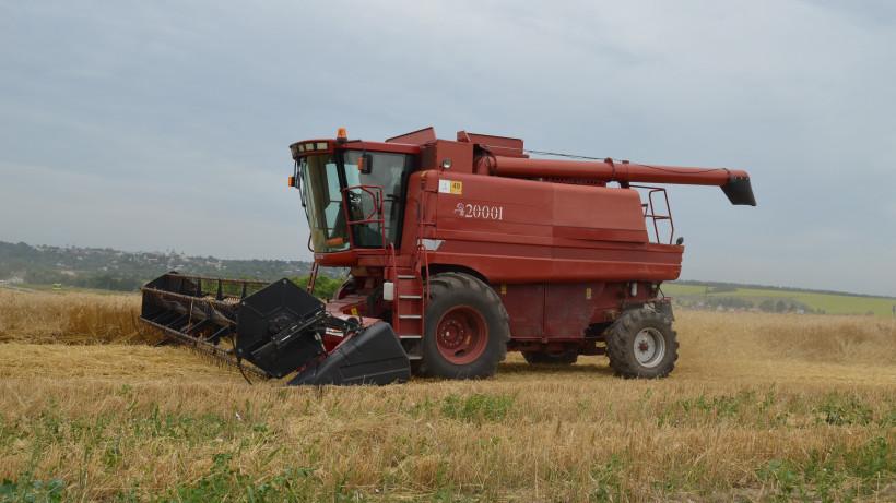 Уборочная кампания зерновых культур в Подмосковье начнется через две недели