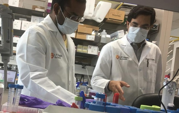 Ученые нашли белок, скрывающий COVID-19 от иммунитета