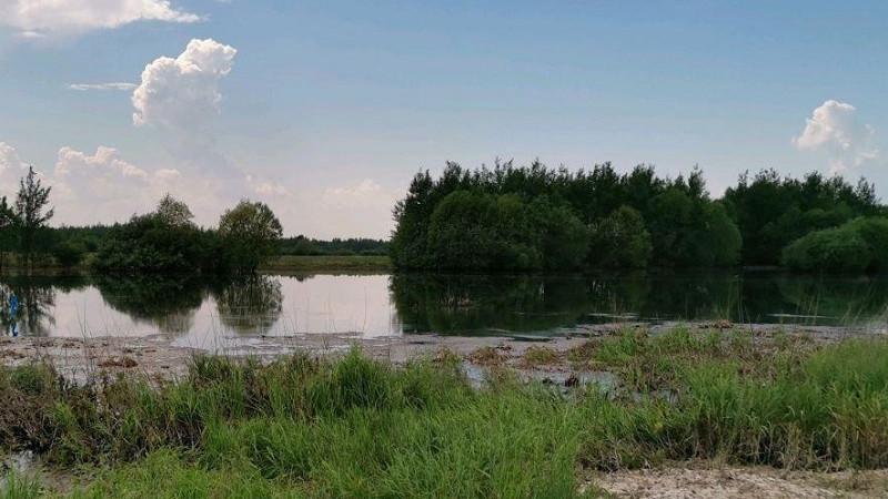 Застройщика в Мытищах накажут за повторное загрязнение реки