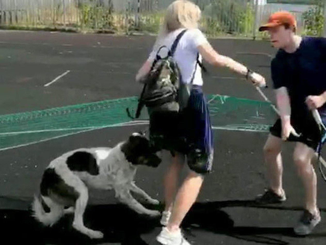 Агрессивная москвичка порезала спортсмена на теннисном корте
